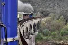 Halloween sul treno a vapore delle Cevenne http://www.piccolini.it/post/749/halloween-sul-treno-a-vapore-delle-cevenne/
