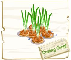 Did your parents ever tell you not to play with your food? Play some ring toss with your Onion Rings in Farm Story!