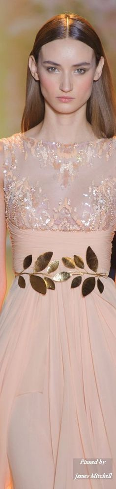 Zuhair Murad Haute Couture Collection Spring Summer 2014 Paris