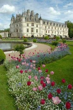 Chateau Chenonceau, France.  Note the lovely pink and red combo set off by frothy white!