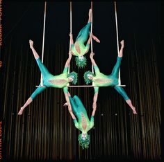 Cirque du Soleil La Nouba - a mesmerizing show! Worth every penny to see!!