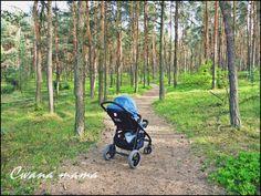 W lesie ;)
