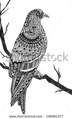 beautiful hand-drawn pigeon, unique style - stock vector