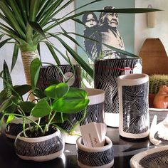 Young in the mountains vases and planters