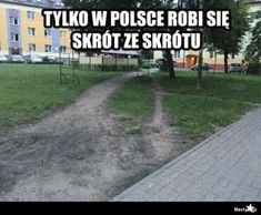 Polish Memes, Mickey Mouse Wallpaper, Dead Memes, Everything And Nothing, Haha, Funny Pictures, Hilarious, Jokes, Humor