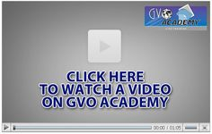 Host Then Profit - Powerful Business Tools & Hosting GVO Host Then Profits Content Marketing, Affiliate Marketing, Marketing Program, Build A Blog, Free Training, Home Based Business, Online Work, How To Make Money, Finance