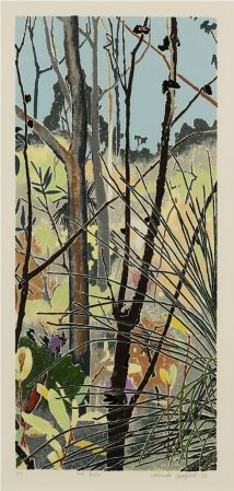 Cressida Campbell (b. 1960) : The Bush 1988 . An amazing artist! Woodblock print