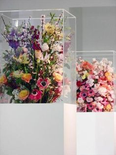 flowers in a box by Mark Colle at the Jill Sander show