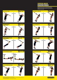 TRX Upper body exercises