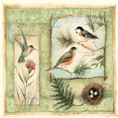 """Custom and Cool {3.5' Inches} Set Pack of 4 Square """"Grip Texture"""" Drink Cup Coasters Made of Flexible Poly Fabric w/ Rubber Bottom and Nature Wildlife Small Birds Design [Colorful Green, Pink and Brown] -- Awesome product. Click the image : Home Decorative Accessories"""