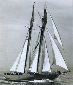 Schooner Bluenose Sailing.
