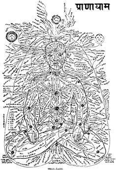 Les chakras sont les plus gros centres énergétiques du corps humain. Ils sont situés le long de la colonne vertébrale. On s'accorde généralement pour en compter 7 :le 1er chakra, Muladhara du sanskrit chakra racine,le 2ème chakra : Svadhisthana,le 3ème chakra : Manipura ou centre solaire,Le 4ème chakra Anahata : le centre du cœur,Le 5ème chakra : Vishuddha,Le 6ème chakra : Ajna, le 3ème œiletLe 7ème chakra : Sahasrara.