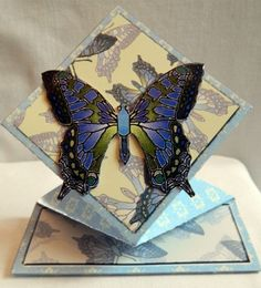 """This 3D butterfly card springs up when you take it out of the envelope.   Blank for you to add your own personal message.  4.25"""" x 4.25""""  10.5 cm x 10.5 cm"""