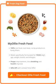 MyOllie Offer Bacon Dog Treats, Sweet Potato Dog Treats, Peanut Butter Dog Treats, Sweet Potatoes For Dogs, Doggie Treats, Dog Treat Recipes, Dog Food Recipes, Toxic Foods For Dogs, Vegan Dog Food