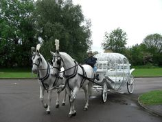 26 Best wedding carriage's images | Wedding Carriage, Amish
