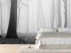 Forest in fog Wall Mural