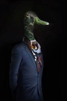 Photographer Miguel Vallinas presents a fashion photo series, titled Second Skin, where animals are digitally dressed in some super stylish outfits that fit them like a second skin. Photoshop, Photocollage, Tier Fotos, Animal Heads, Animal Faces, Photo Series, Strike A Pose, Pet Clothes, Second Skin