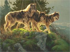 Greg Beecham - American Artist of the Wild West. Wolf paintings - View his art here: http://www.whitewolfpack.com/2011/10/greg-beecham-american-artist-of-wild.html #Art #Animals #Wolves