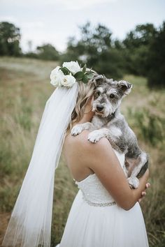 ©Emily Nicole Photo | bridal portraits with dog, dog photography ideas, blind Schnauzer mix,:
