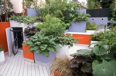 Container Deck Design with moveable pots, foliage plants, hidden bicycle storage shed, hostas, grasses, blue and orange benches, pots, walls...