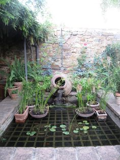 A strong grate submerged an inch or 2 below the surface of a deeper pool of water provides an opportunity for display of potted aquatic plants as well as giving fishies some protection from predators.  via debraprinzing