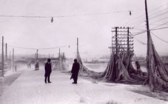 A 19th Century Telephone Network Covered Stockholm in Thousands of Phone Lines