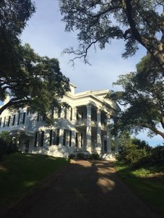 Stanton Hall, Natchez Picture: photo0.jpg - Check out TripAdvisor members' 2,214 candid photos and videos of Stanton Hall