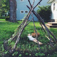 Create a backyard teepee. , Create a backyard teepee. Create a backyard teepee. Dream Garden, Garden Planning, Garden Inspiration, Garden Landscaping, Landscaping Ideas, Outdoor Gardens, Rustic Gardens, Awesome Things, Create