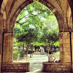 Jardin en la Biblioteca de Catalunya