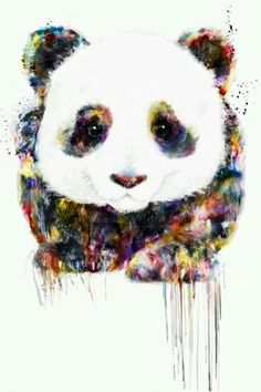 Colourful panda