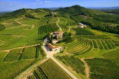 Torre_Rosazza_Vini_Colli_Orientali_Friuli_Panoramica_Vigneti.jpg (immagine JPEG, 1024×683 pixel)