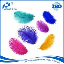 Ostrich Feather, Ostrich Feather direct from Cixi Hong Yuan Feather Products Co., Ltd. in China (Mainland)