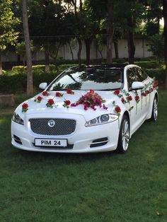 360 Best Luxury Car Hire Delhi Images Delhi Airport Goa India
