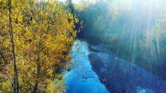 L'autunno nel l'Idice a Castenaso