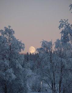 Ideas Nature Forest Moonlight La Luna For 2019 I Love Snow, I Love Winter, Snow Scenes, Winter Scenes, Winter Moon, Winter Night, Look At The Moon, Beautiful Moon, Beautiful Scenery