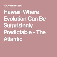 Hawaii: Where Evolution Can Be Surprisingly Predictable - The Atlantic
