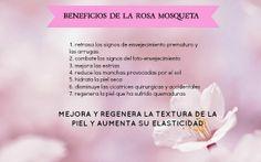 ACEITE DE ROSA MOSQUETA Y SUS PROPIEDADES