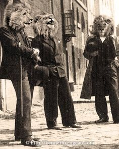 Dandy Lions....I'm not sure why it's so funny, but it is