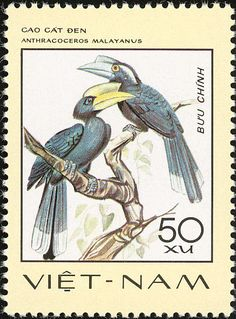 Black Hornbill stamps - mainly images - gallery format