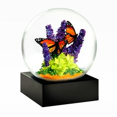 Marvel at the exquisite yet endangered butterfly in the Monarch Snow Globe