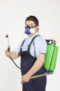 نبض الرياض أفضل شركة مكافحة حشرات و رش مبيدات بالرياض #مكافحة_حشرات #مكافحة_النمل_الابيض #رش_مبيدات #الرياض شركة نبض الرياض تنظيف و مكافحة حشرات بالرياض 0551046994 https://nabdalriyadh.com/ تنظيف شقق و فلل و مكاتب