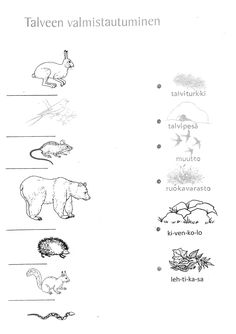 Biology For Kids, Science Biology, Finnish Language, Logo Clipart, First Grade Science, Environmental Studies, Teaching Geography, Language School, Teaching Aids