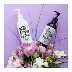 New in and we are totally in ❤️: Naturally Products with beautiful smell from Like the Fig Tree soap and lotion - the ideal way to stay fresh . Bio Shop, Fig Tree, New Love, Body Lotion, Soap, Stay Fresh, Skin Care, Cosmetics, Blog