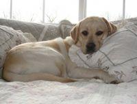 Comfy and cozy...