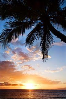 Hawii Beach Vacation