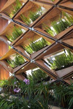 aménagement jardin: treillis en bois couvert de plantes