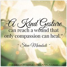 """""""A kind gesture can reach a wound that only compassion can heal.""""  ― Steve Maraboli"""