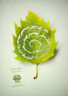 Advertising agency Legas Delaney has created this nice series of print ads for Plant for the Planet, an organization which aims to erase carbon, apply climate justice and plant 1,000 billion trees. The illustrations feature meticulously cut leafs to symbolize the fact that plants absorb CO2, hence our activities leave scars.
