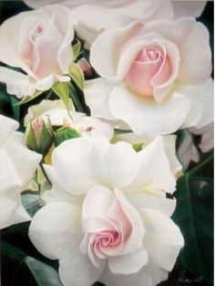 gorgeous white roses with pink heart