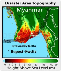 This region with its 6.6 million people is the most exposed a rea in Myanmar to threats of climate change. This is a flat low lying delta facing the Bay of Bengal, with myriads of waterways and rivers penetrating far into the country.   Read more of this text here: https://wvltv.wordpress.com/2015/06/09/ayeyarwady-region-the-most-vulnerable-area-in-myanmar/  ADOPT A MANGROVE www.thorheyerdahlclimatepark.org/product/mangrove-tree/